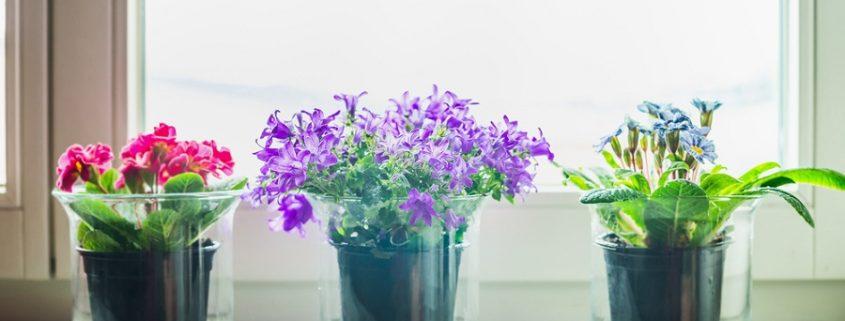 Miért érdemes műkő ablakpárkányt választani?